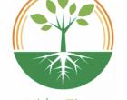Hidroflora. Un proyecto de estudiantes de la ULE que recoge fondos para Isadora Duncan
