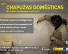 """Isadora Duncan pone en marcha un nuevo taller de """"chapuzas domésticas"""" dirigido a mujeres inmigrantes"""