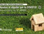 Taller online: Ayudas al alquiler por la COVID19